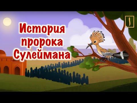 Сулейман пророк мультфильм