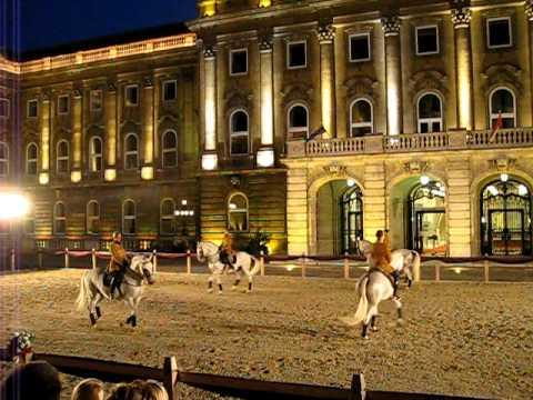 Hungary 3 Budapest Epona Equestrian Academy July 2011.AVI