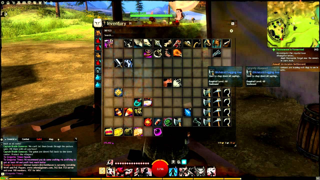 how to open guild wars 2