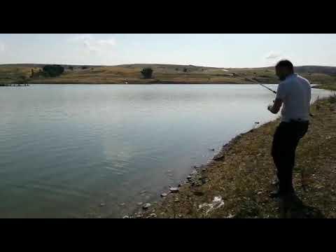 Canlı Balıkla Turna Avi Pike Hunt