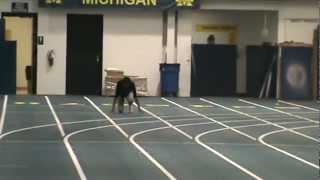 Olympic Champion Allyson Felix  2011 Christmas break practice at University of Michigan