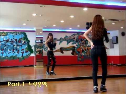 T-ara-I Go Crazy Because Of You(dance Tutorial Part1).flv