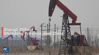 China's oilfield put in efforts to reduce carbon emission, increase oil production