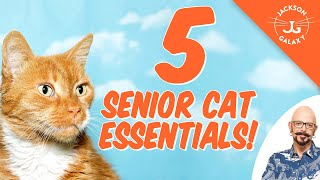 5 Senior Cat Essentials!