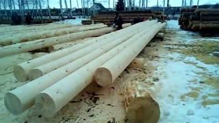 видео Обработка бревен сруба бани или дома