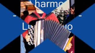 duet harmonika Jevtic   Ciric   Ljiljino kolo
