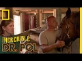 Getting Up Close and Personal | The Incredible Dr. Pol