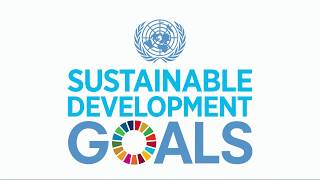 Do you know all 17 SDGs?