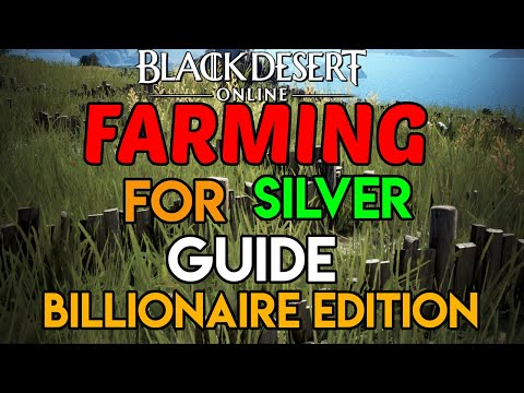 Farming For Silver | Billionaire Edition | Xbox One & PC | Black Desert online