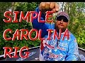 SIMPLE CAROLINA RIG: HOW TO CHOOSE LINE, HOOKS, WEIGHTS, SWIVELS, AND RODS FOR THE C-RIG WITH TIPS