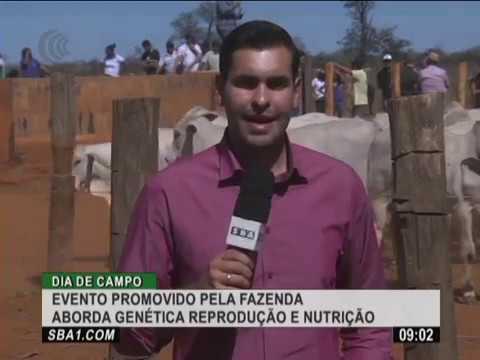 Dia de campo promovido pela fazenda Japaranduba aborda genética reprodução e nutrição