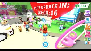 Roblox adopt me pet update countdown