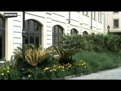 Groupon Milano Spa