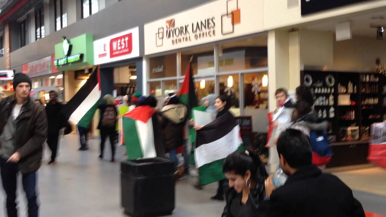 Pro-Palestinian students at York