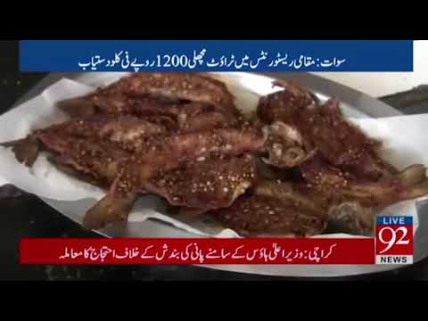 Swat, Trout Fish Report by Abdullah Sherin 92 news hd