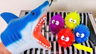 Shark Puppet and Fish Toys Shredded! Colorful Squishy Animals Destroyed! What's Inside Hand Puppet?