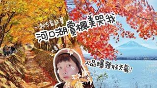 河口湖賞楓一日遊 富士山超清楚 紅葉美哭我|紅葉迴廊|搭乘「富士回遊」新宿出發1小時52分直達