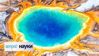 Экстремофилы: пришельцы рядом с нами | Вопрос науки с Алексеем Семихатовым