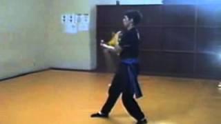 Aulas de Kung Fu Trial Video