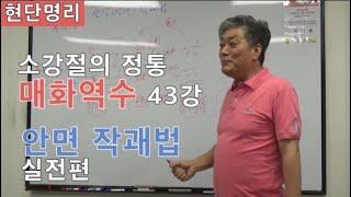 [현단명리] 매화역수 43강 안면작괘법 실전편