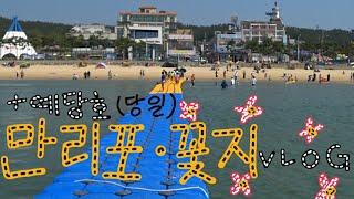 일상브이로그 / 예당호 출렁다리 / 해안사구 / 만리포…