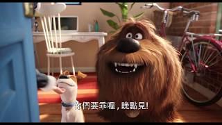 【寵物當家2】勇敢篇 - 6月6日 中、英文版同步歡樂登場