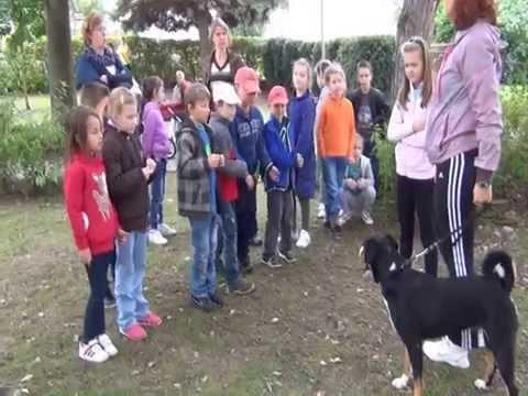 ZŠ JCH Krupina - Deň zvierat 2014