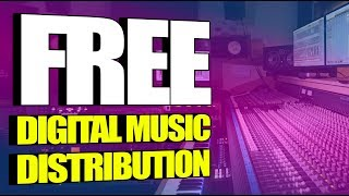 Free Digital Music Distribution   Should You Use Amuse, RouteNote, or a Paid Service Like Distrokid?