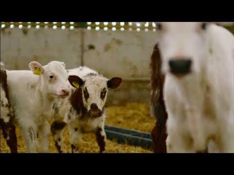 Off Grid Organic Farming.  Gaze-gill Farm. BBC Countryfile