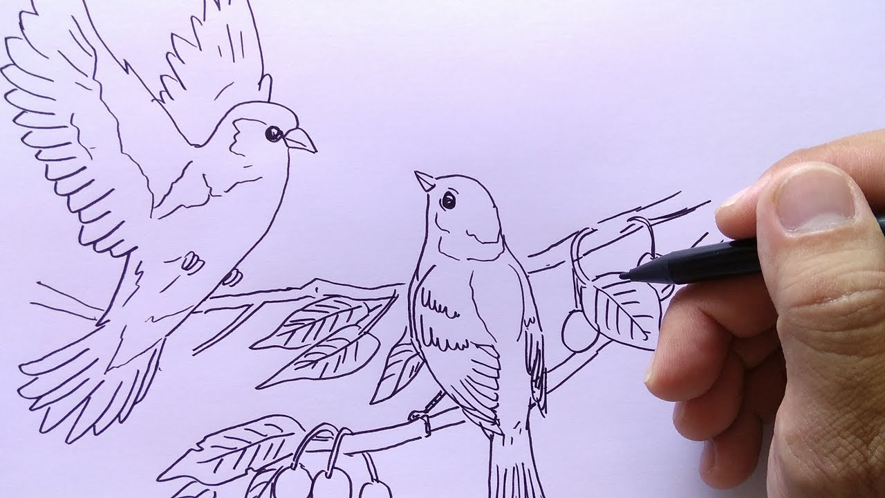 76 Gambar 2 Dimensi Hewan Burung Paling Hist