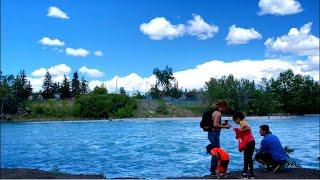 화창한 날 바베큐 파티 시즌인 캐나다 공원풍경, 힐링풍…