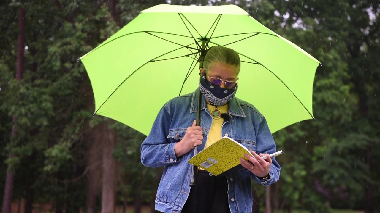 Download Haiku in the Rain