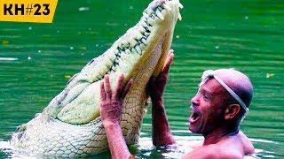 Удивительная и Невероятная Дружба Человека с Дикими Животными | КОТОНОВОСТИ 23