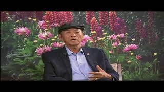 sinh hoat tai little saigon 4 18 06 2018 movie