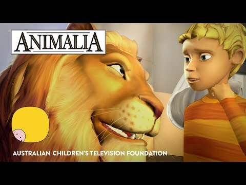 Animalia - Series Trailer