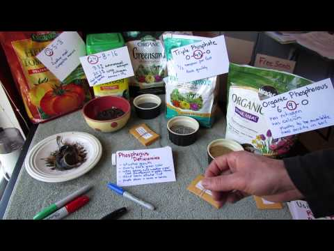Understanding Garden Phosphorous: What it Does, Chemical vs. Organic, Availability & pH: TRG 2014