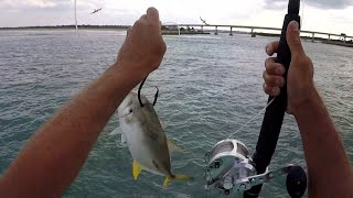 Big Bait means Big Fish - CATCHING DINNER