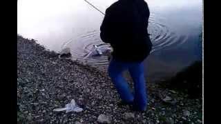 Видео приколы смотреть Рыбалка онлайн приколы Ловля рыбы на снасть смотреть Рыбалка на леща на донку