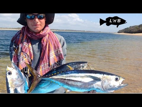 Offshore Tuna and Bonito FRENZY