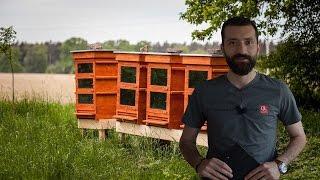 خلايا تعمل بتقنية حرارية لحماية النحل