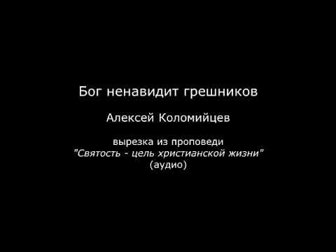 Бог ненавидит грешников (Алексей Коломийцев)