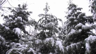 Julesange, Christmas Carols, (piano only; no singing)