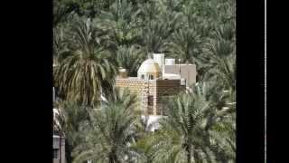 8 jours en voiture au Sultanat d'Oman