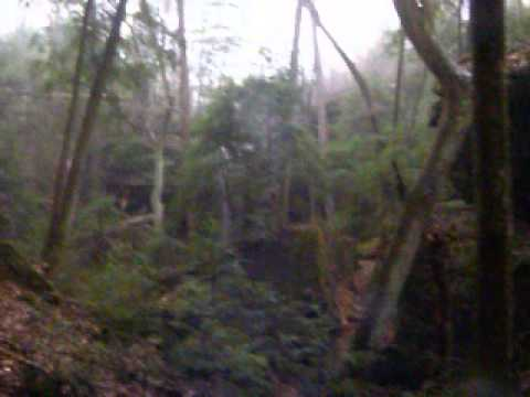 Clifty creek falls walk up sipsey wilderness al 03 30 13 - Clifty falls state park swimming pool ...