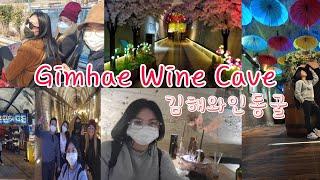 GIMHAE WINE CAVE| 김해 와인 동굴
