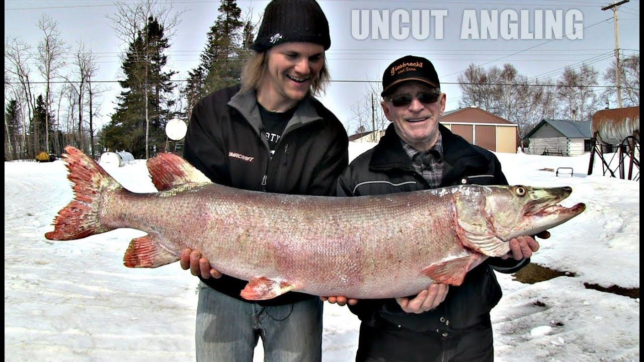 First musky ever from lake winnipeg uncut angling for Lake winnipeg fishing report
