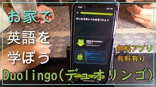 【Duolingo】人気の英語学習アプリに挑戦!楽しく外国語を学べるよ(^^♪ screenshot 4