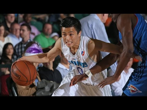 Yuki Togashi NBA D-League Highlights: November-January