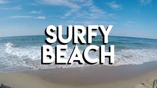 Surfy Beach [모토브이로그, 바이크 일기, 청정조각공원, 서피비치]