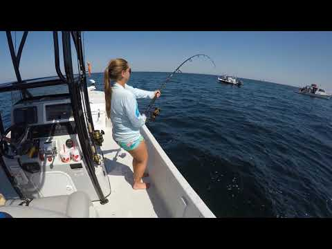 Amberjack trip off Pensacola Beach - Pensacola Fishing Charters 8503939055